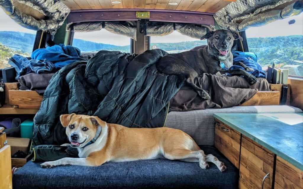 Best RVs for traveling with pets